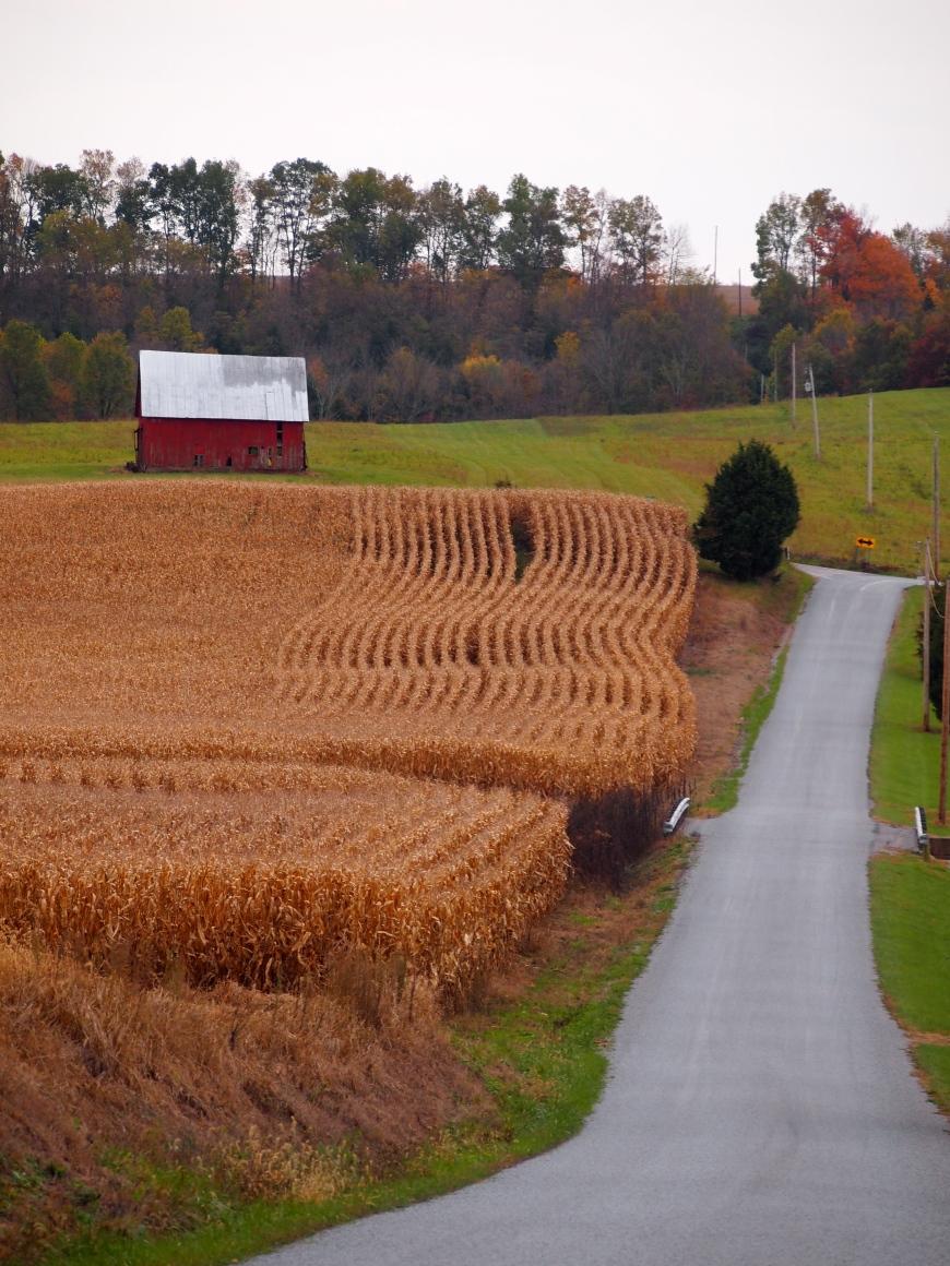 The Fling Barn in Hillsboro, Ohio | Fabulous 50's