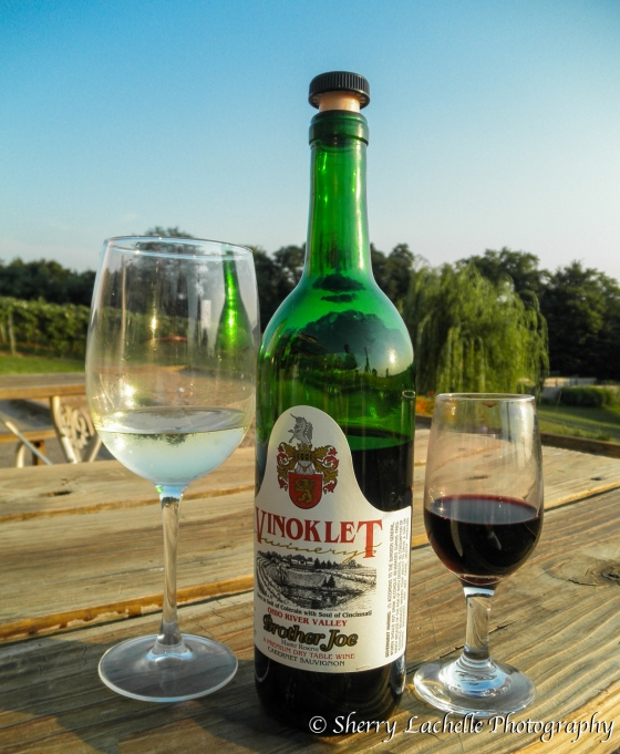 Enjoying a Cabernet Sauvignon at Vinoklet Winery