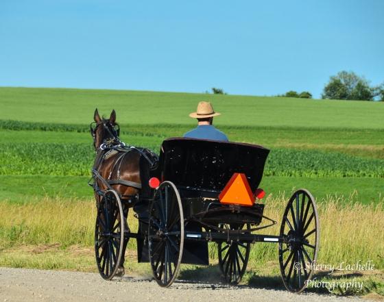 Amish18